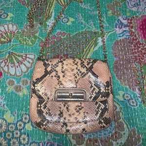 Small snakeskin Coach purse